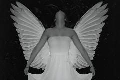 Noir Angel